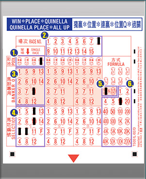 Quinella place betting