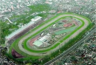 Tokyo Racecourse